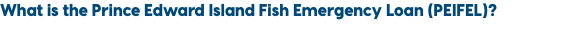 What is the Prince Edward Island Fish Emergency Loan (PEIFEL)?
